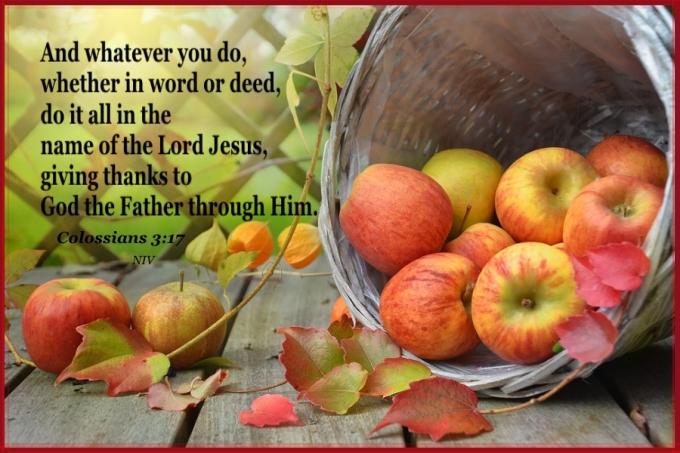 Colossians 3 17