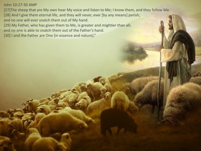 John 10 27 30