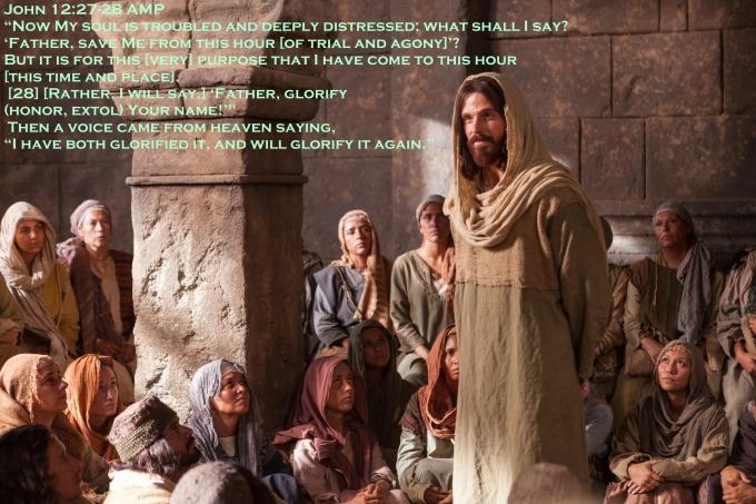 John 12 27 28
