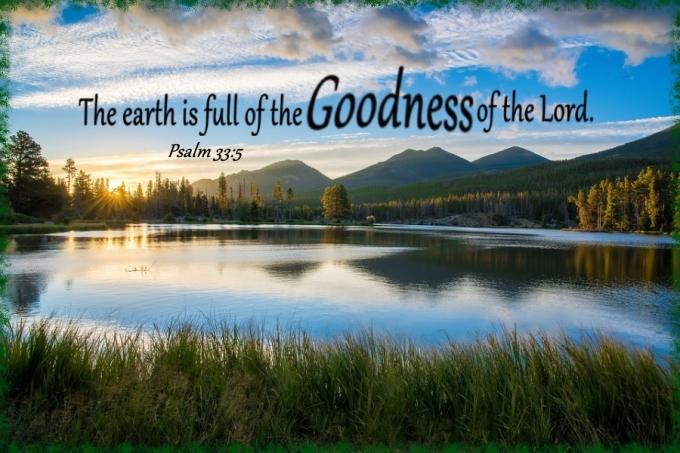 Psalm 33 5