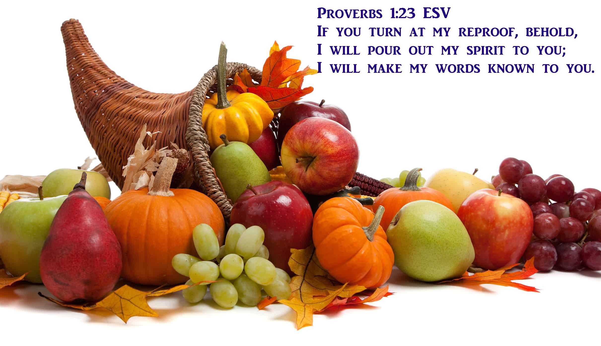 Proverbs 1 23 11-09-2020