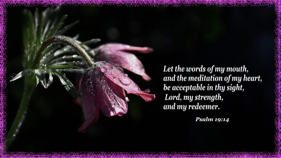 Psalms 19 14
